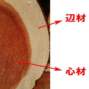 henzaishinzai